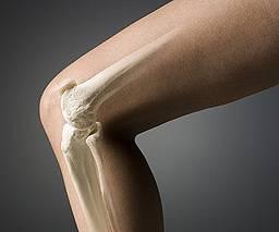 Нетрадиционное лечение артроза коленного сустава в санкт-петербурге суставы маламута