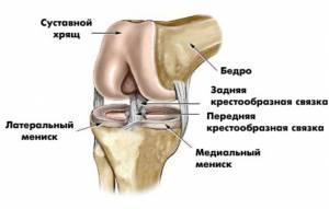 Болит колено мениск чем полезен турмалин для суставов в креме